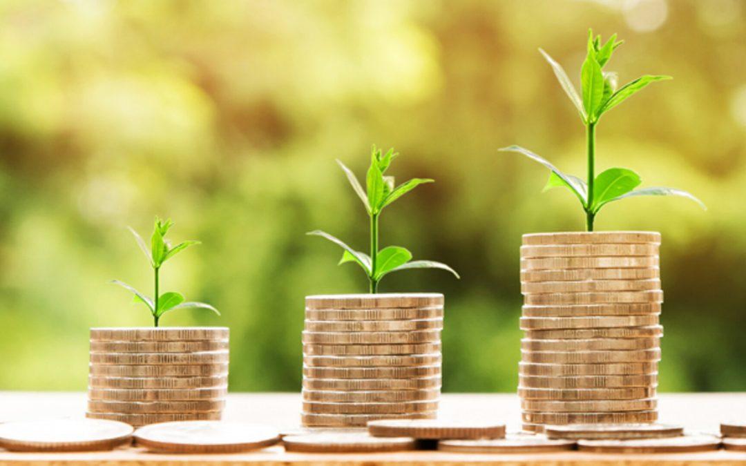 Ismea, Agroalimentare: un'azienda su 4 programma investimenti nei prossimi 12 mesi